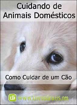 Como Cuidar de um Cão