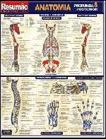Resumão: Anatomia Profunda & Posterior