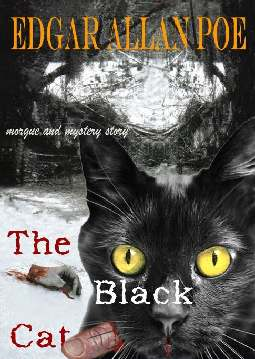 O Gato Preto (The Black Cat) - Edgar Allan Poe